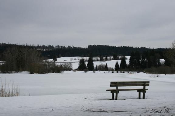 Solitude blanche du lac de Remoray